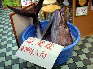 青森 魚市場